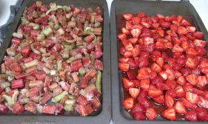 Strawberry Rhubarb Crisp 009