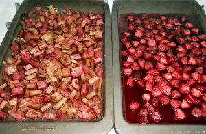 Strawberry Rhubarb Crisp 018