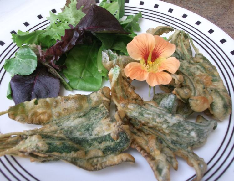 Sage Fritters 031