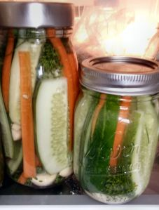 Crunchy Refrigerator Dill Pickles 016